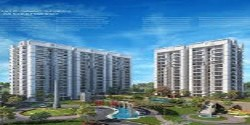 Flats In Zirakpur | 1 BHK, 2 BHK, 3 BHK, 4 BHK Luxury Ultra Modern Flats In Hermitage Park Near K Area Zirakpur  call 9888777712  9888775612