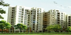 2 BHK & 3 BHK Luxury Flats in Palm Heights, Haibatpur Road, Derabassi, Mohali – Call – 9888777712, 9888775612